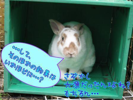 コピー 〜 IMG_6998.JPG